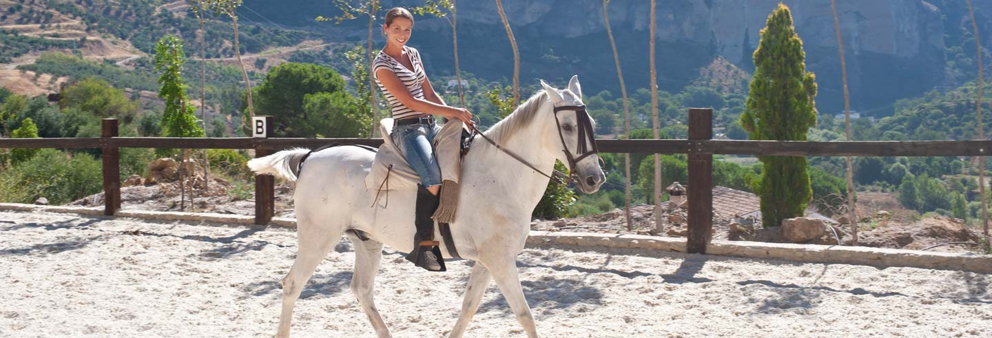 El Aljarafe Horse Riding Tour