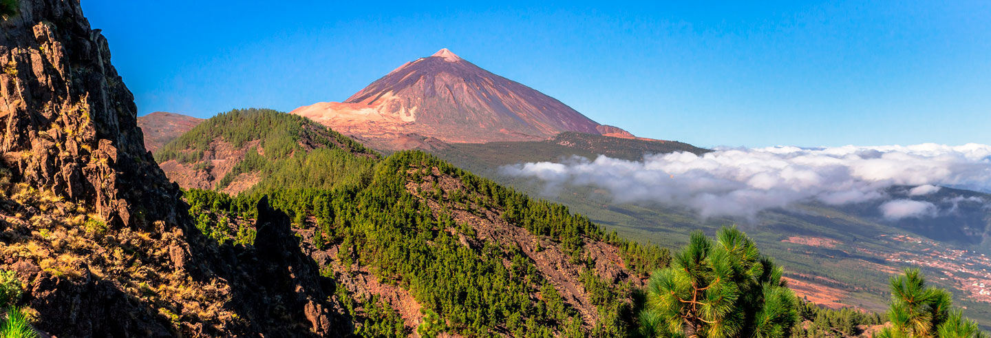 Teide National Park and Puerto de la Cruz Day Trip