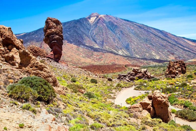 ,Con visita a las Cañadas del Teide,Excursión a Teide,Puerto de la Cruz