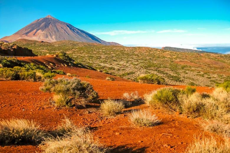 ,Excursión a Teide