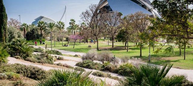 Free tour en bicicleta por el Jardín del Turia ¡Gratis!