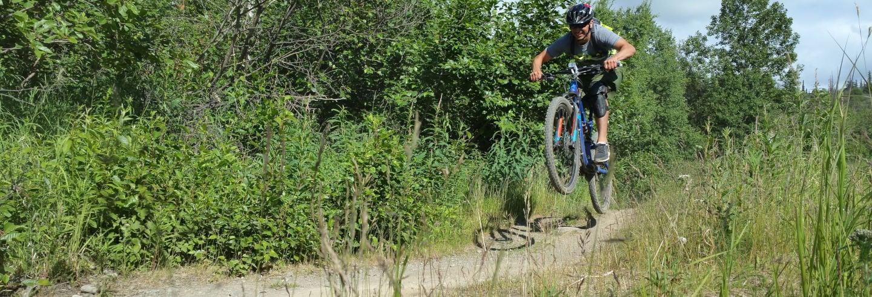 Tour en bicicleta por los bosques de Anchorage