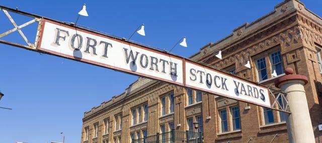 Excursión a Fort Worth