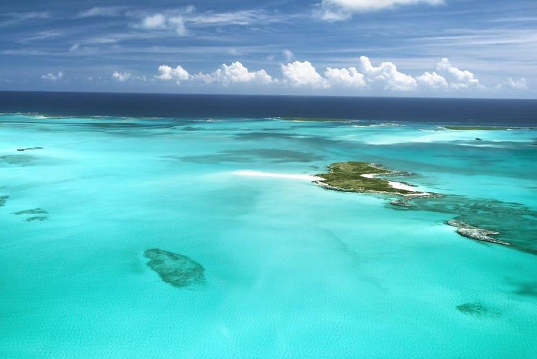 ,Excursión a las Islas Bahamas