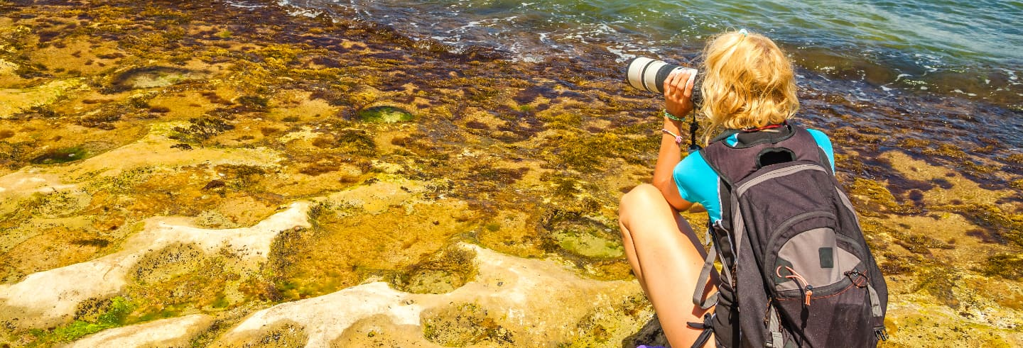 Photography Tour of Oahu