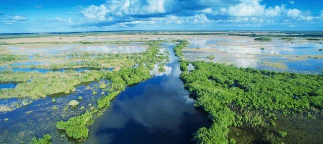 Excursión a los Everglades