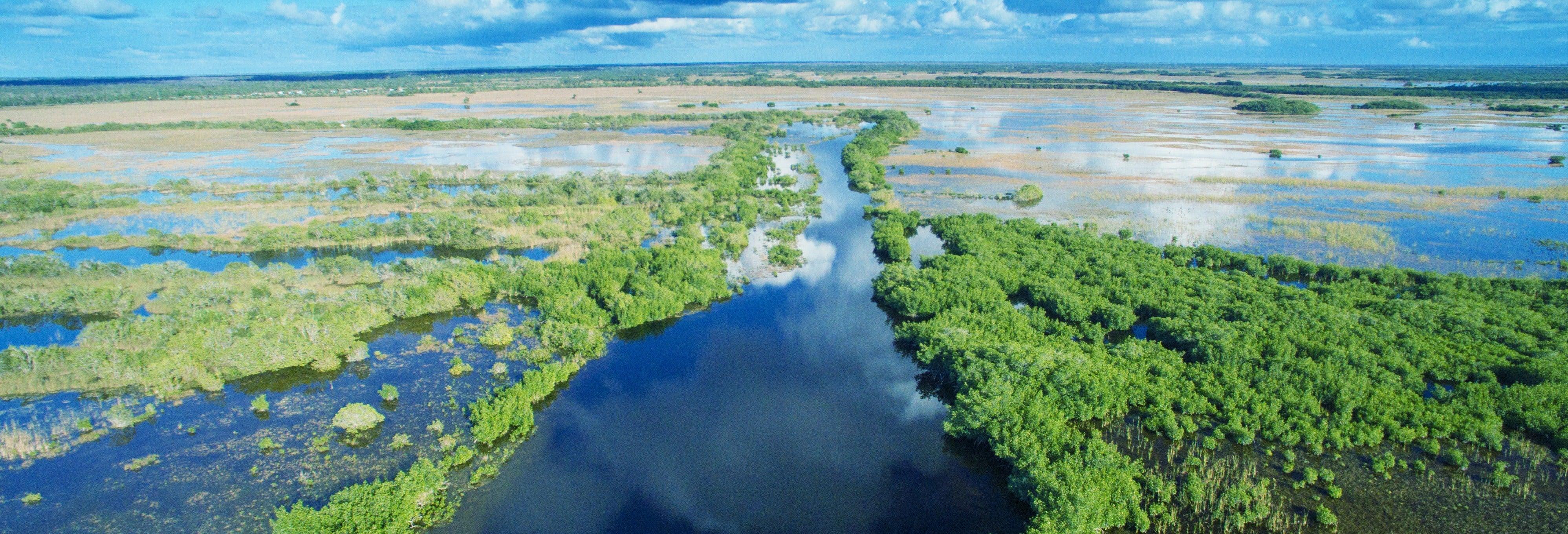 Excursão aos Everglades