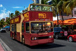 Miami Tourist Bus