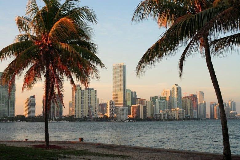 Comparez les prix d'activités à Miami