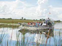 Airboat tour