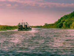 Hovercraft crossing the Everglades