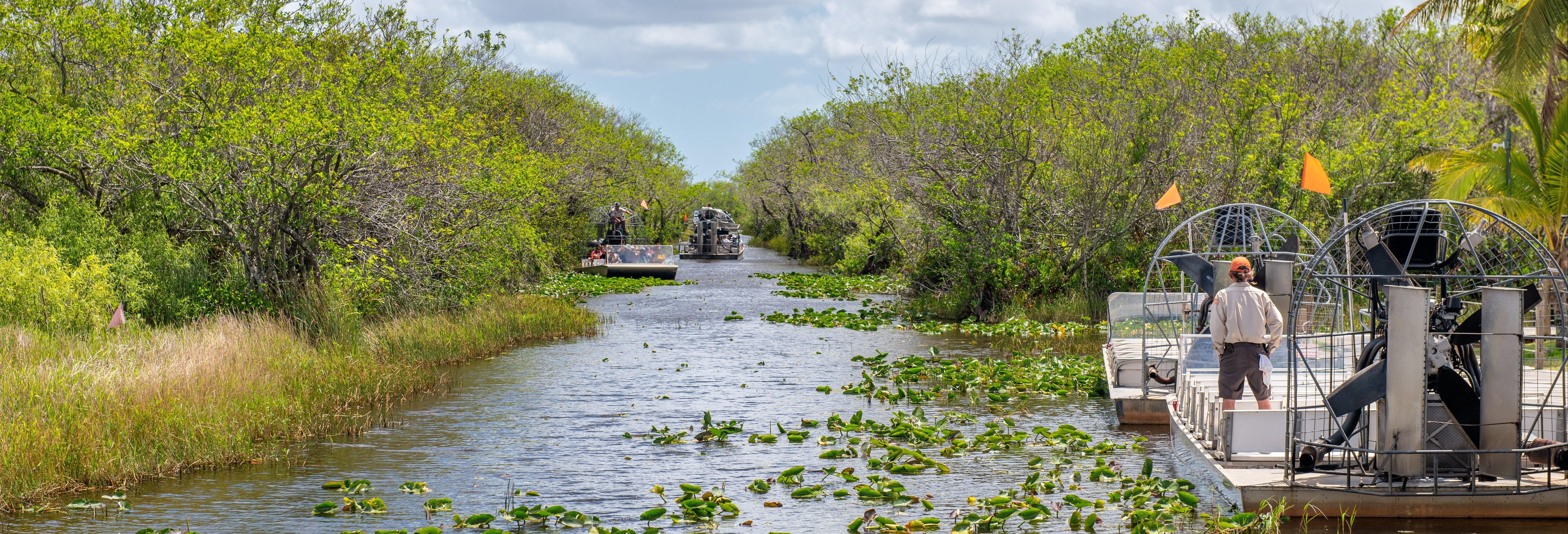Passeio de airboat pelos Everglades