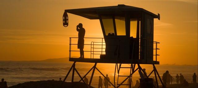 Tour privado por Miami con guía en español