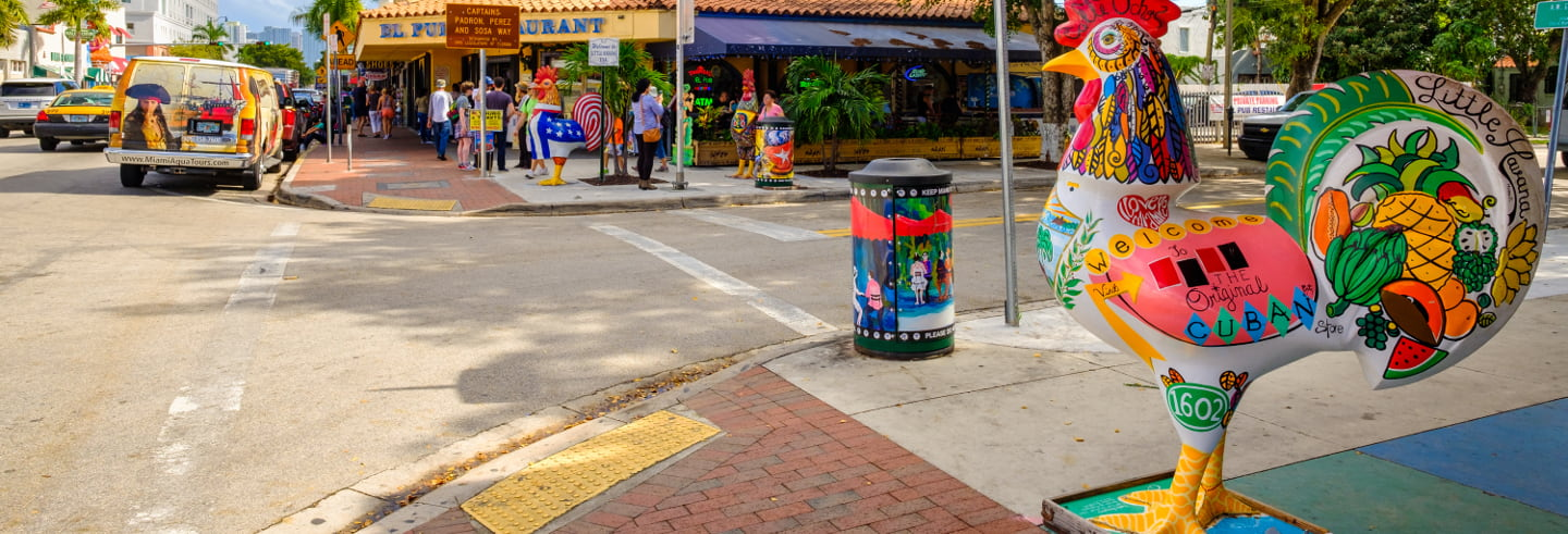 Visite guidée dans Little Havana et Downtowm Miami