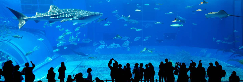 Ingresso do Monterey Bay Aquarium