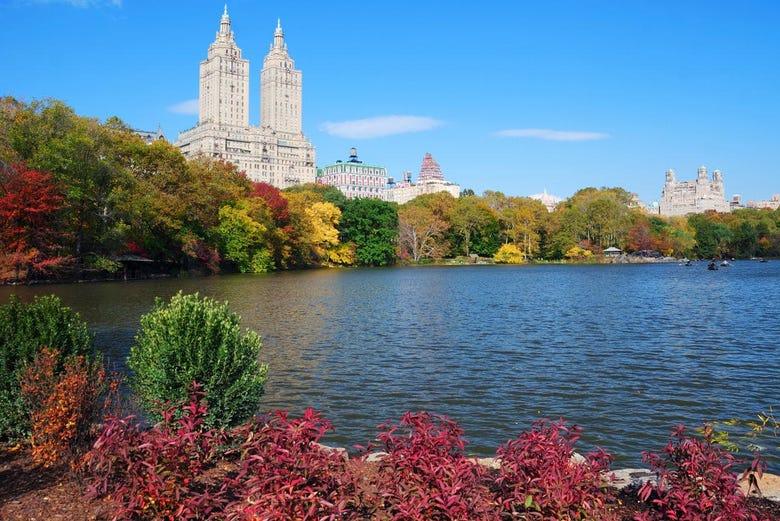 Visita guiada pelo Central Park, Nova Iorque