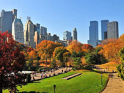 ,Tour Central Park,Central Park,Carruaje