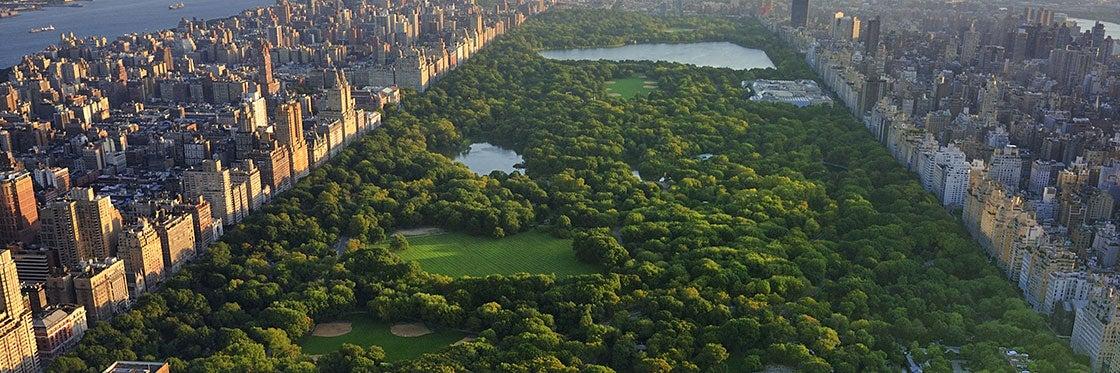 Resultado de imagen de Central Park