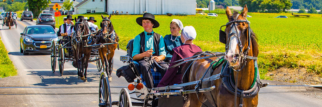 Amish Communities In Usa Map.Visit The Amish In Lancaster What To See And Do In Lancaster