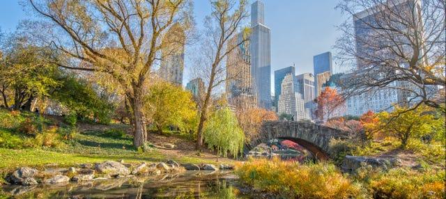 Visita guiada por Central Park