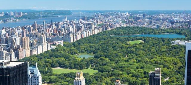 Tour por Central Park + Top of the Rock