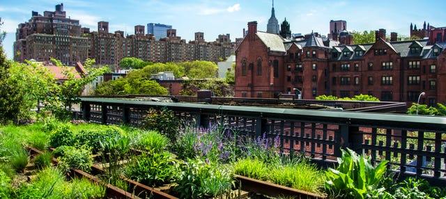 Tour por High Line y Hudson Yards