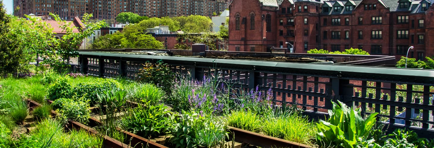 Visite de la High Line et de Hudson Yards
