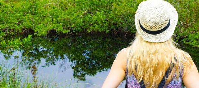 Excursão a Miami e aos Everglades