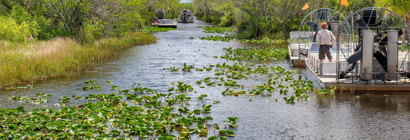 Hovercraft tour of the Everglades