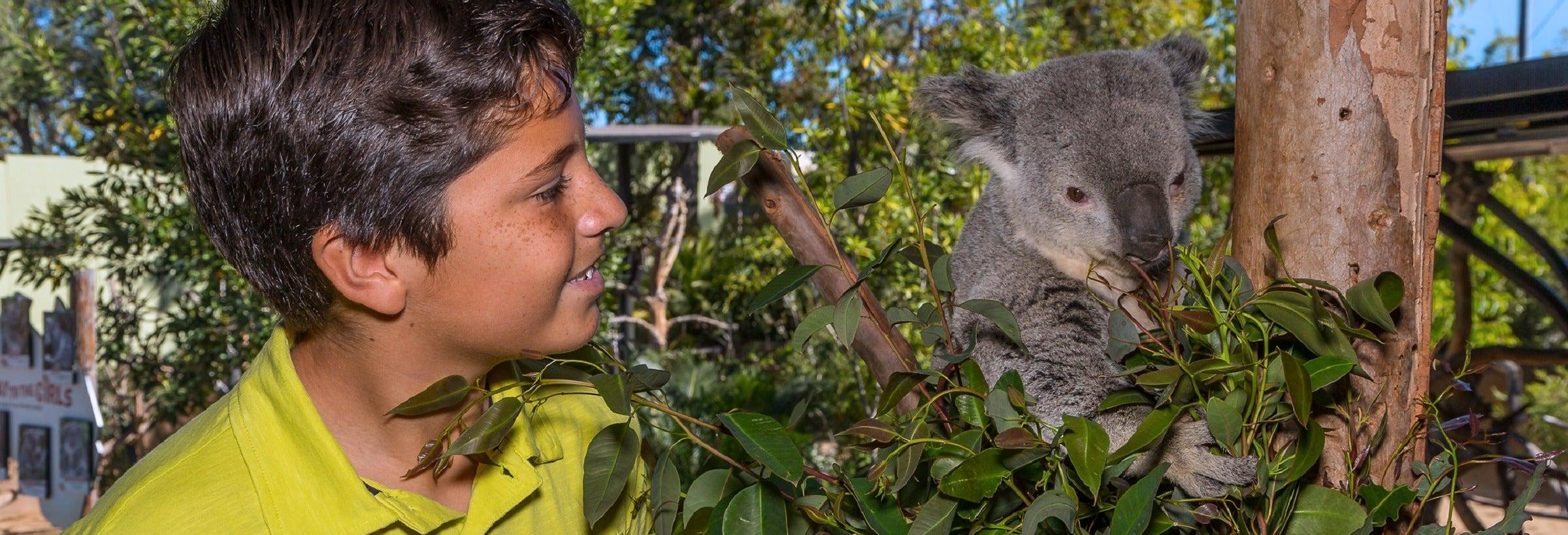 Ingresso do San Diego Zoo