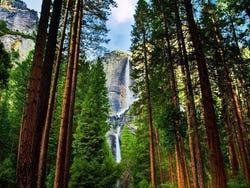 Yosemete Falls
