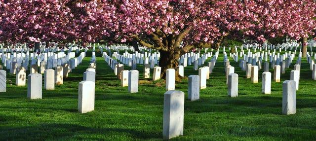 Cementerio de Arlington, Iwo Jima y Pentágono