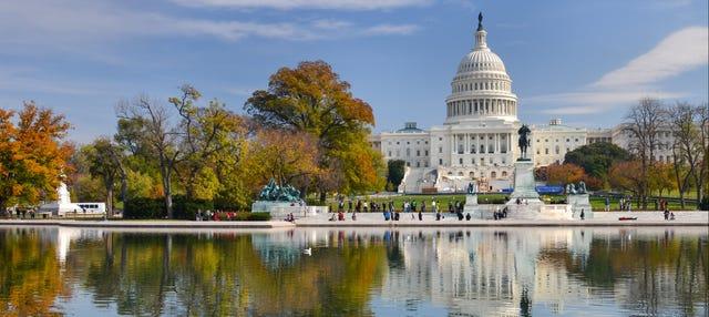 Tour privado por Washington con guía en español