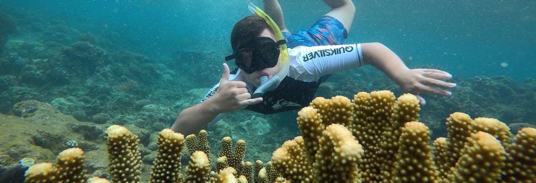 Snorkel nos recifes da lagoa de Beqa
