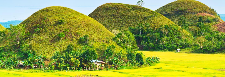 Excursión a Bohol