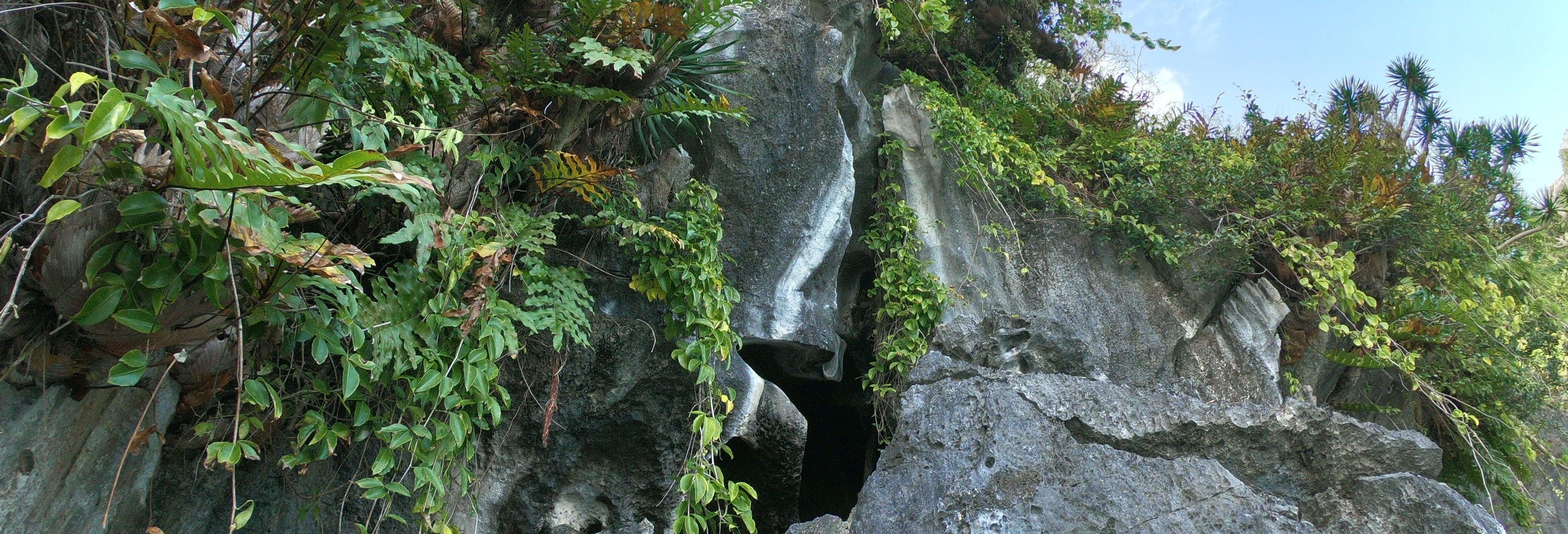 Tour de barco pelas grutas de El Nido