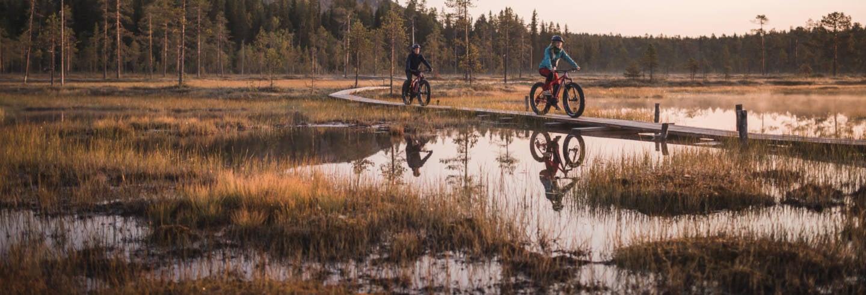 Tour en bicicleta eléctrica por el Parque Nacional Pyhä-Luosto