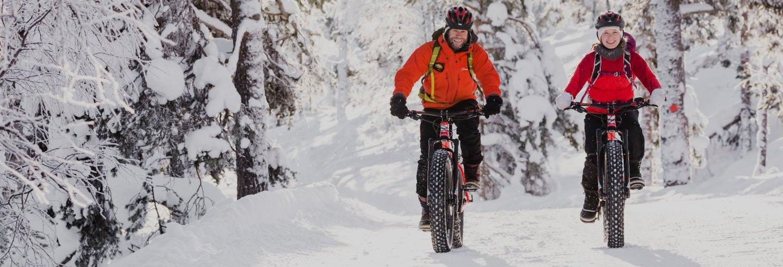 Pyhä-Luosto National Park Electric Bike Tour