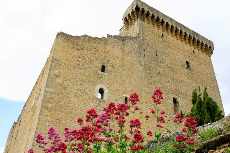 Excursion à Avignon, Châteauneuf du Pape et Les Baux