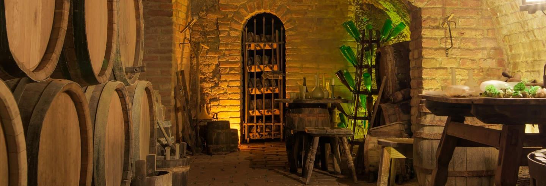 Ingresso das grutas Duhard + Degustação de vinhos