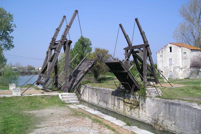 Visite autour de Van Gogh en Provence