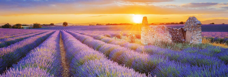 Visite de la Provence