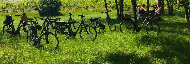 Excursión a Saint Emilion + Tour en bicicleta eléctrica