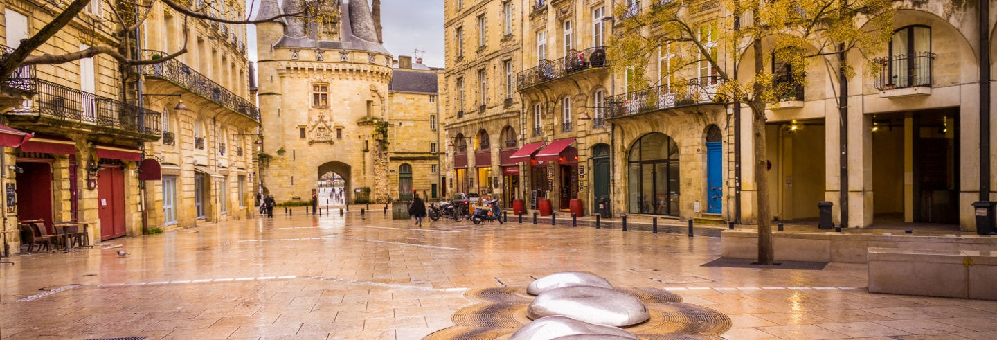 Free tour di Bordeaux
