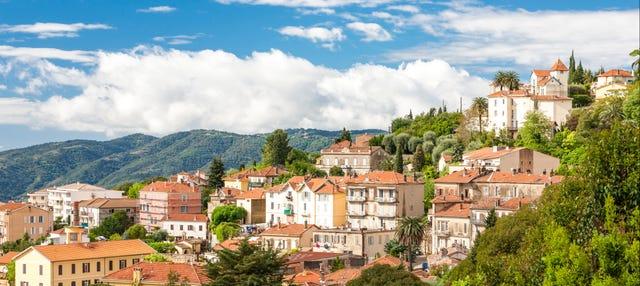 Excursión a Grasse + Degustación de vino