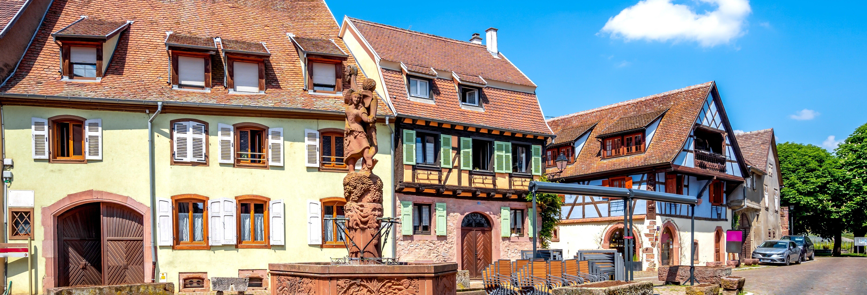 Tour dell'Alsazia + Degustazione di vini