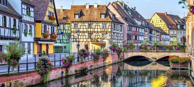 Tour por Alsacia + Castillo Haut-Koenigsbourg