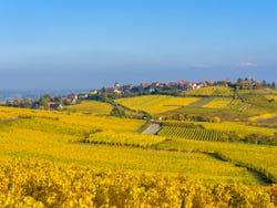 ,Excursión a Ruta de vinos de Alsacia