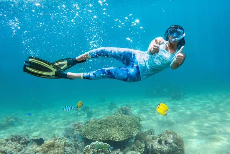 Randonnée et snorkeling sur la côte de Marseille