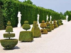 Versalles Imagenes Y Fotos De Paris